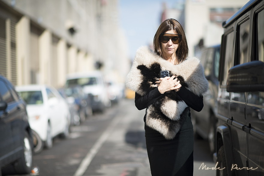 Carine Roitfeld | unknown | before Ralph Lauren | New York Fashion Week Fall/Winter 2013 | Feb 14, 2013.